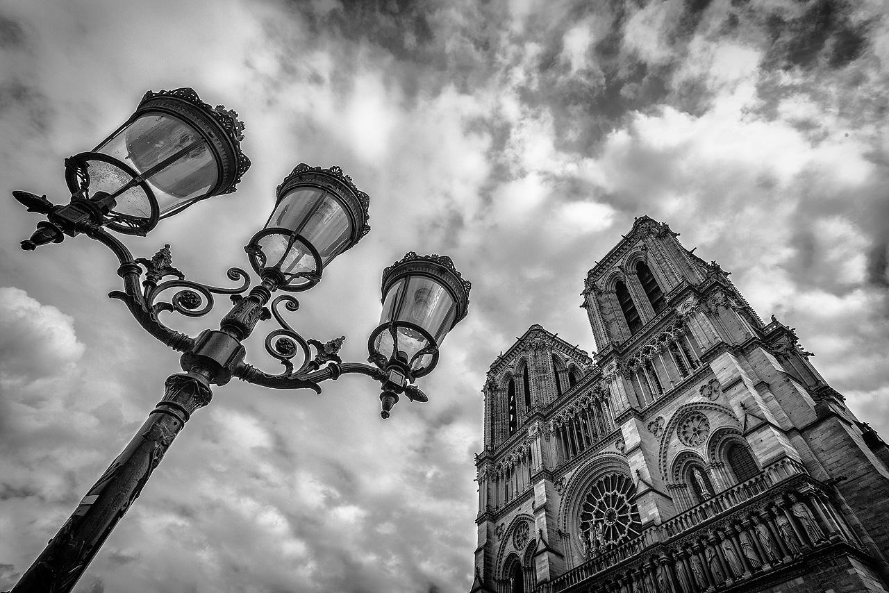 Cathédrale Notre-Dame - Paris (75)